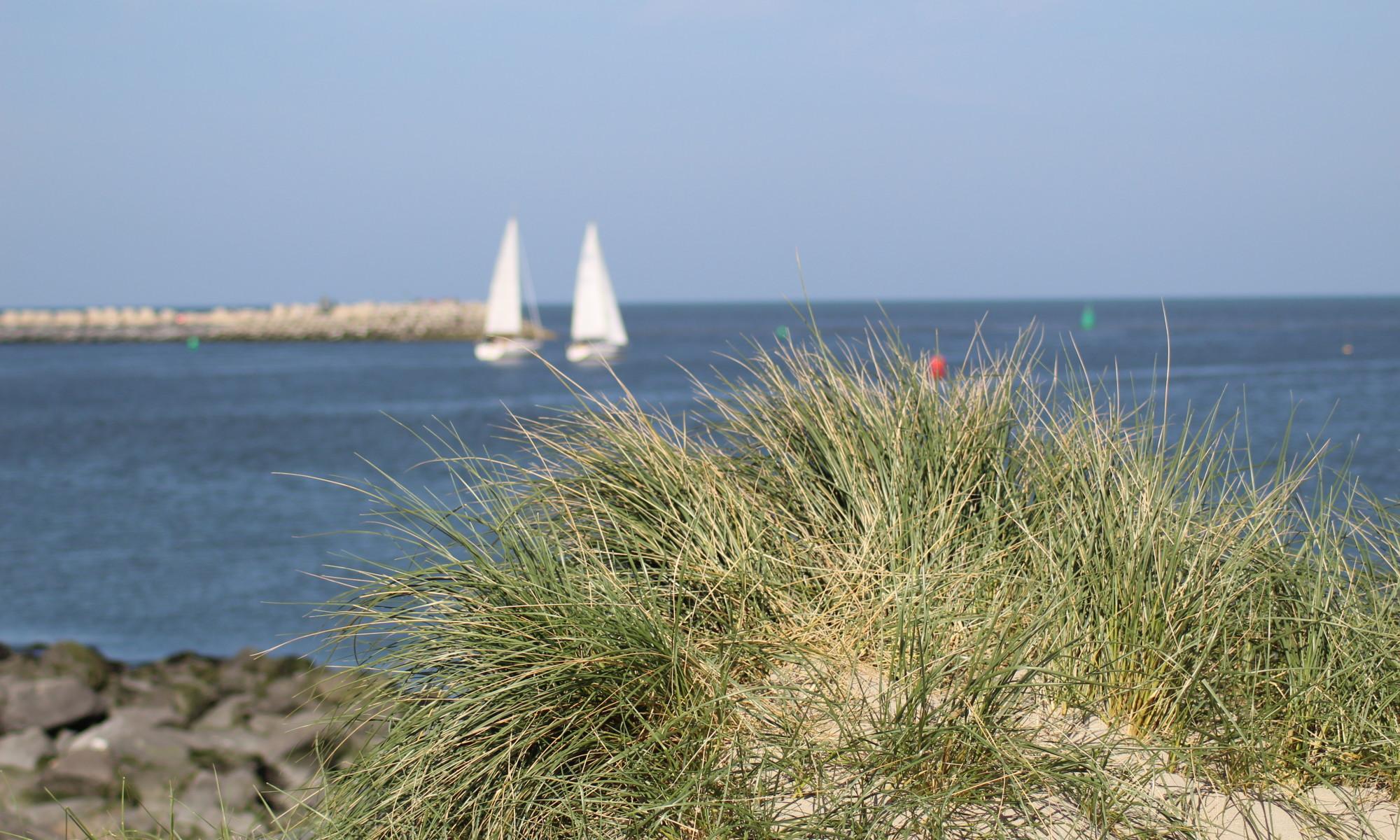 Foto van aan de kust met zeilboten en helmgras